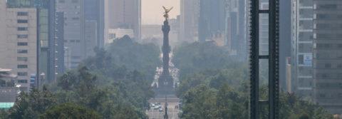 México sembrará millones de árboles para combatir contaminación
