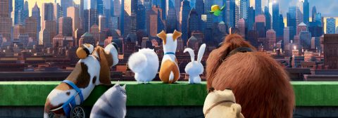 """THE SECRET LIFE OF PETS"" GET THREE MINI-MOVIES ONLY WHEN YOU BUY AN SOON COMING IN DVD ON DECEMBER 6, 2016,"