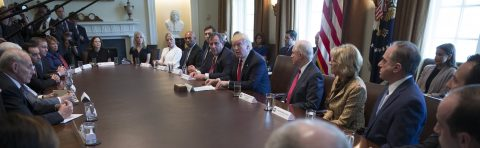 Trump creates commission to seek solutions to opiate addiction epidemic