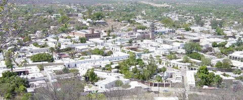 Alamos: A gem in the Sonoran desert