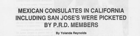 MEXICAN CONSULATES IN CALIFORNIA INCLUDING SAN JOSE'S WERE PICKETED BY P.R.D. MEMBERS