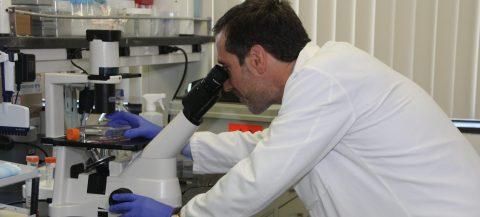 Presentan una terapia online capaz de mejorar calidad de vida enfermos cáncer