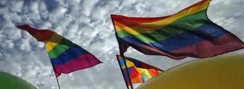 PADF exigirá en Asamblea de la OEA proteger a mujeres, indígenas y LGBTI