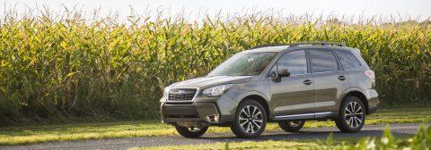 Subaru Forester. Lobo disfrazado de cordero