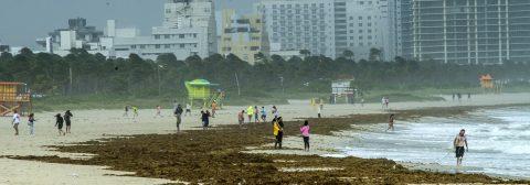 Florida Keys reopen after Hurricane Irma's devastation