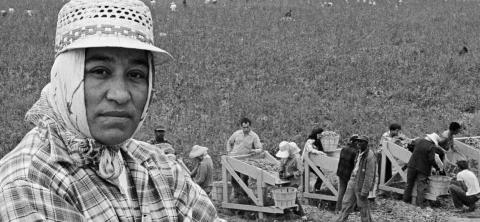 """CINEQUEST: """"Soy ciudadana americana y hablo pidiendo justicia"""" – María Moreno"""