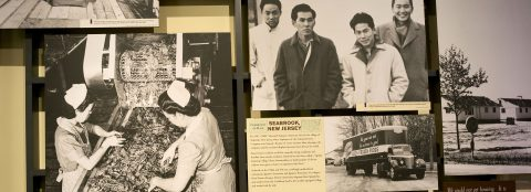 Migrant crisis at US-Mexico border revives memories of Japanese camps