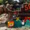 Trompita the Asian elephant celebrates 58th birthday at Guatemalan zoo
